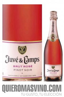Juvé y Camps Brut Rosé