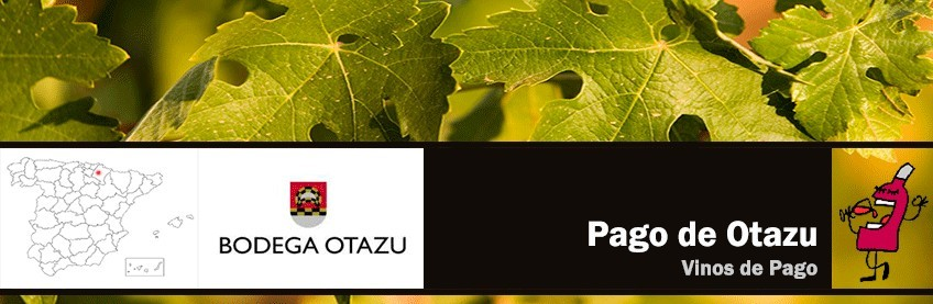 Pago de Otazu
