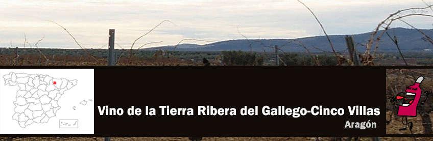 vinos de ribera del gallego cinco villas