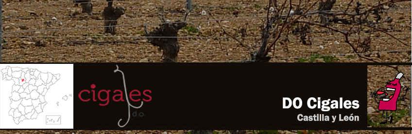 vinos de cigales