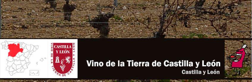 vinos de la tierra de castilla y leon
