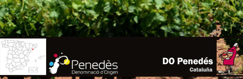 vinos del penedes